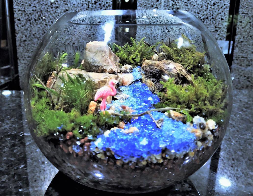 苔テラリウム作り体験 広がる自然風景の世界をかわいいグラスボールに再現<約90分〜/新宿御苑前>by カルチャースクールいろは
